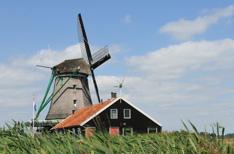 Dutch Windmill  Zaandam 2 Stock Images