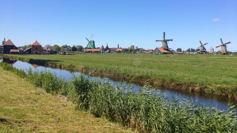 Dutch windmills near Amsterdam stock photos