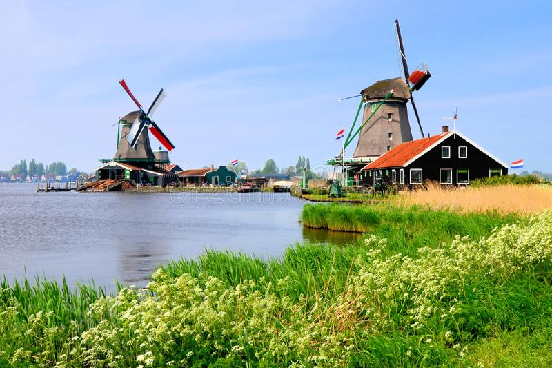 Dutch windmills of Zaanse Schans royalty free stock photo