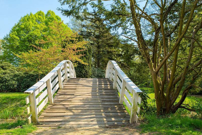 Dutch wooden arch bridge in park during spring. European wooden arch bridge in park during spring season royalty free stock photography