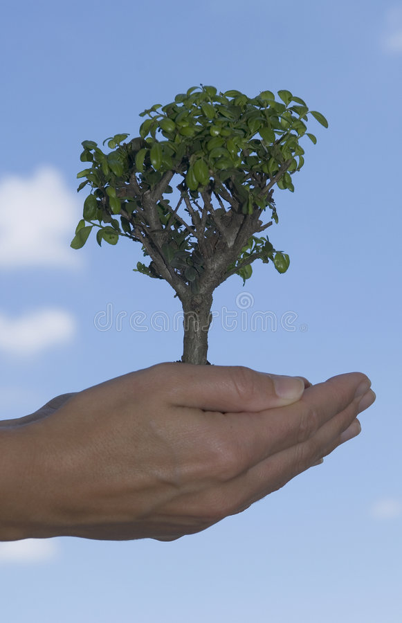 Duurzaamheid stock foto's