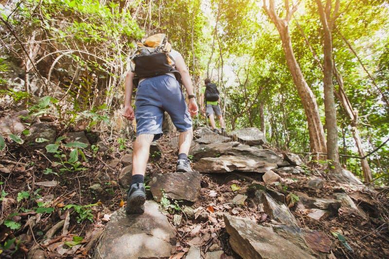 Duurzaamheidsconcept, groep wandelaars die, trekking omhoog beklimmen royalty-vrije stock afbeeldingen