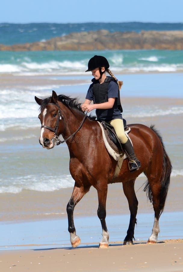 Duurzaamheidsruiter met paard op strand royalty-vrije stock afbeeldingen