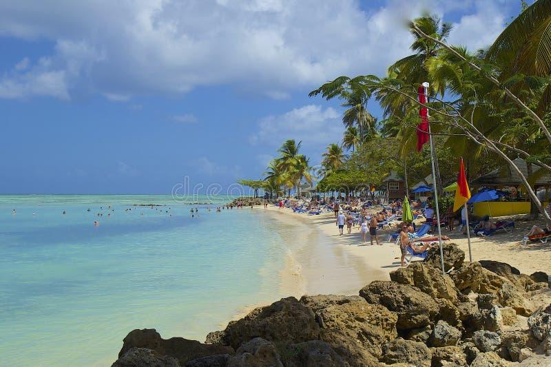 Duvapunktstrand, Tobago som är karibisk arkivfoton