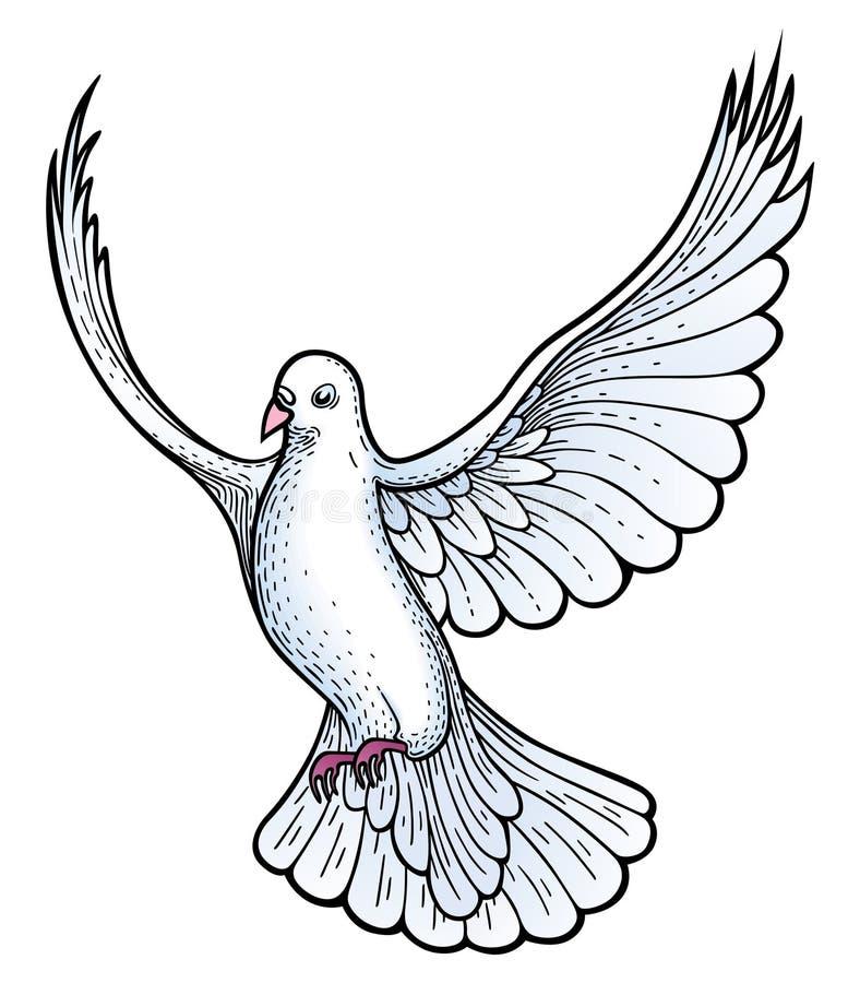 duvavektorwhite royaltyfri illustrationer
