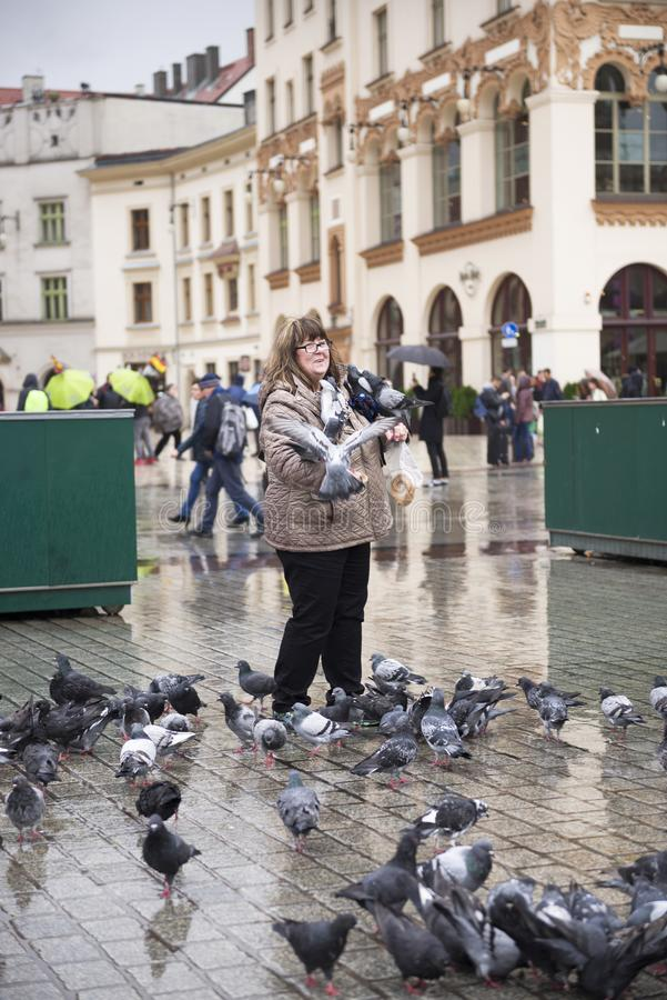 Duvor och folk i Krakow royaltyfri fotografi