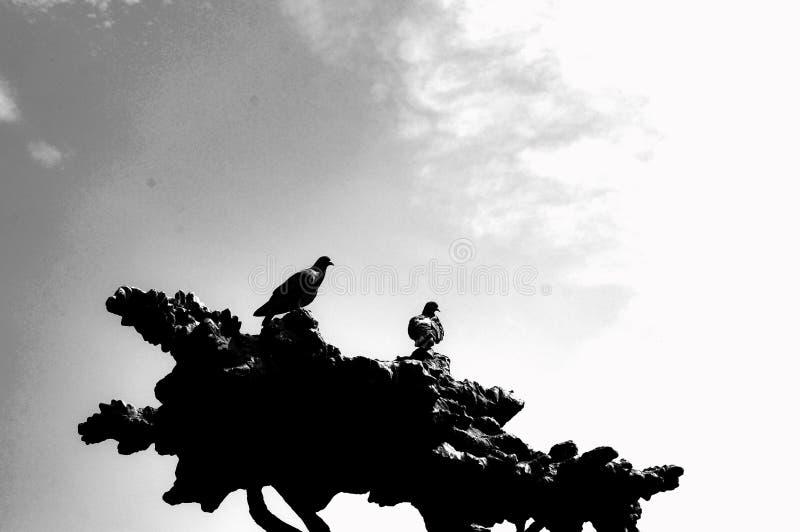 Duvor sitter på ett bronsträd Yoshkar-Ola 2018 royaltyfri bild
