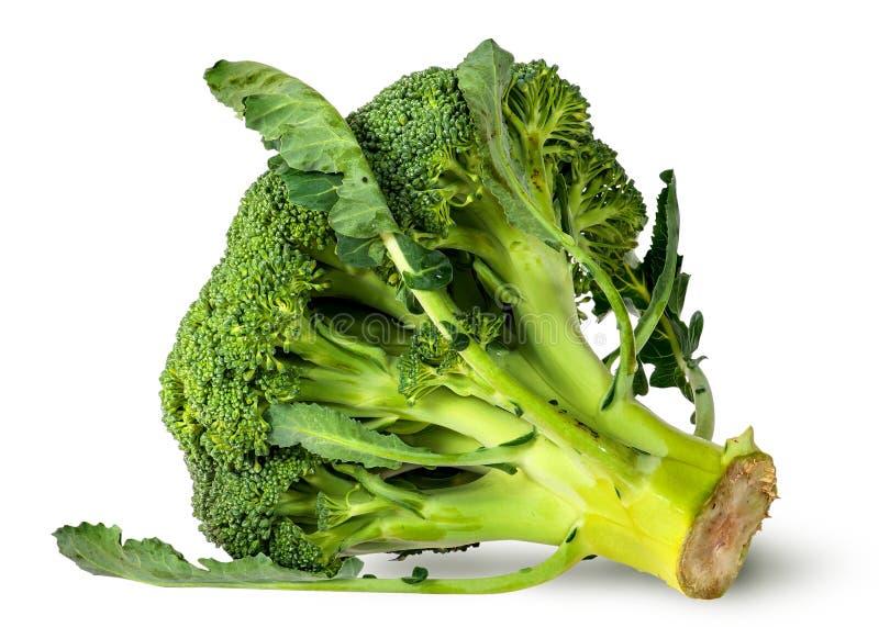 Duzi brokułów florets z liśćmi zdjęcia stock