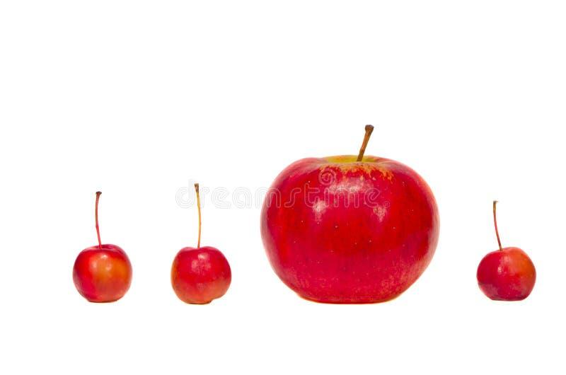 Duzi i mali czerwoni jabłka odizolowywający na bielu zdjęcia stock