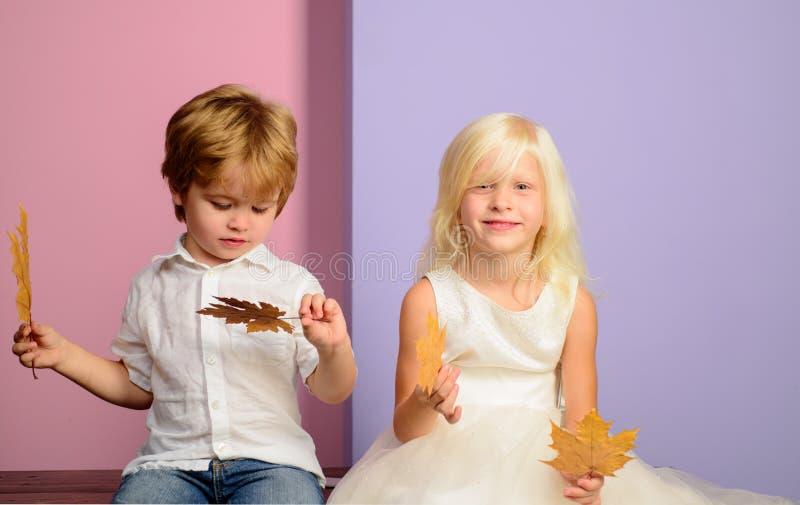 Duzi rabaty dla wszystkie jesieni odziewaj? dla dzieci Ch?opiec i dziewczyna w sezonowym odziewamy z z?otym li?ciem zdjęcia royalty free