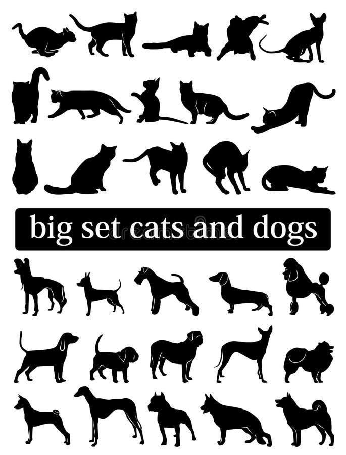 Duzi ustaleni psy i koty sylwetki ilustracja wektor