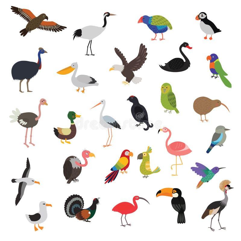 Duzi wektorowi ptaki ustawiający ilustracji