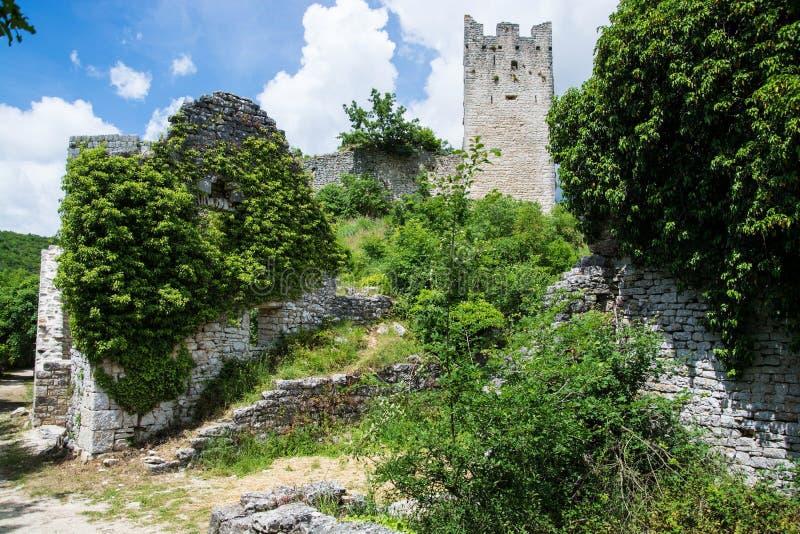 Dvigrad, Istria, Хорватия стоковые изображения rf