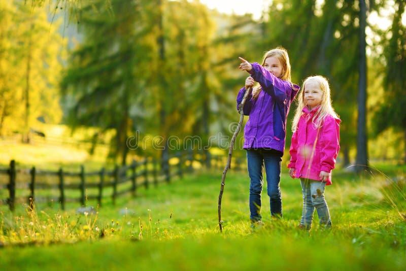 Dwa ślicznej ślicznej małej dziewczynki ma zabawę podczas lasowej podwyżki na pięknym jesień dniu w Włoskich Alps obrazy stock