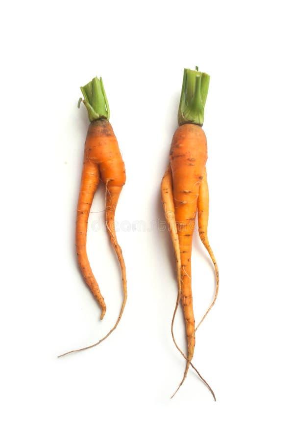 Dwa śmiesznej marchewki na białym tle fotografia royalty free