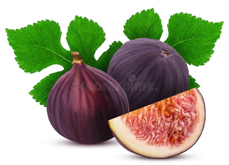 Dwa świeżej figi owoc i plasterek z liściem zdjęcia royalty free