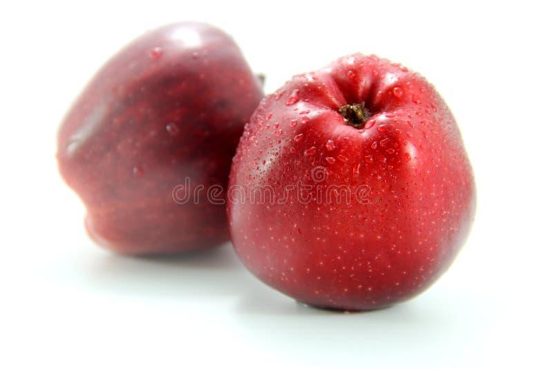 Dwa świeży czerwony jabłko zdjęcie stock