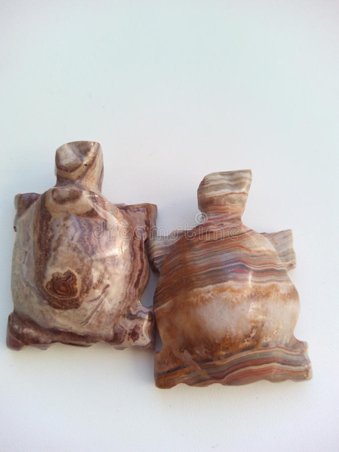 Dwa żółwia onyks obraz royalty free