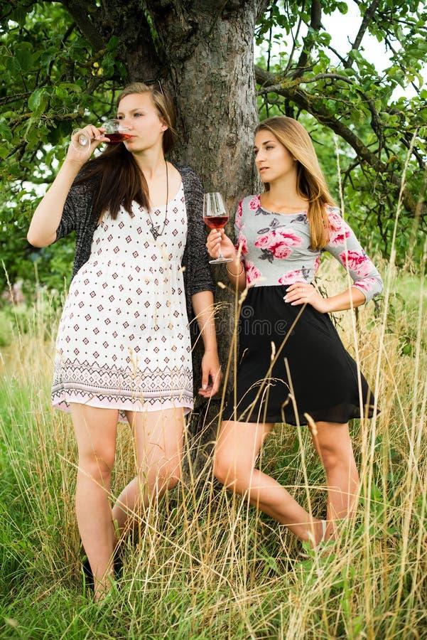 Download Dwa ładnej Dziewczyny W Ogródzie Pod Drzewem Obraz Stock - Obraz złożonej z greenbacks, szczęśliwy: 57664715