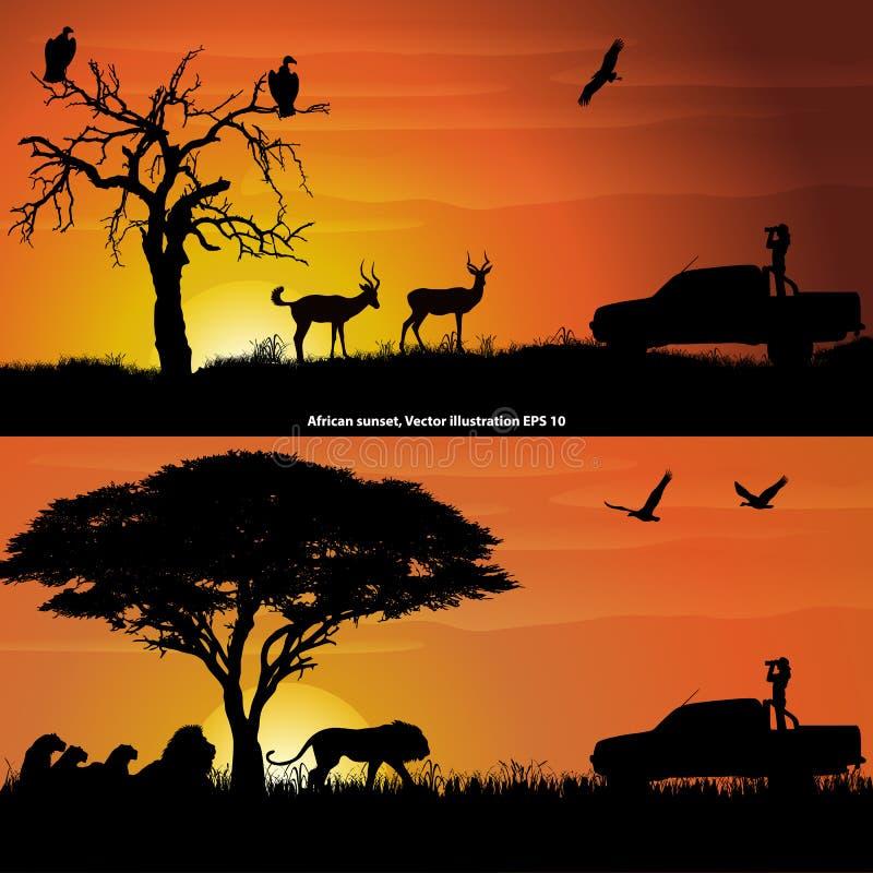 Dwa afrykańskiego krajobrazu przy zmierzchem, z dziewczyną z lornetkami, impalas, lwami i ptakami, ilustracja wektor
