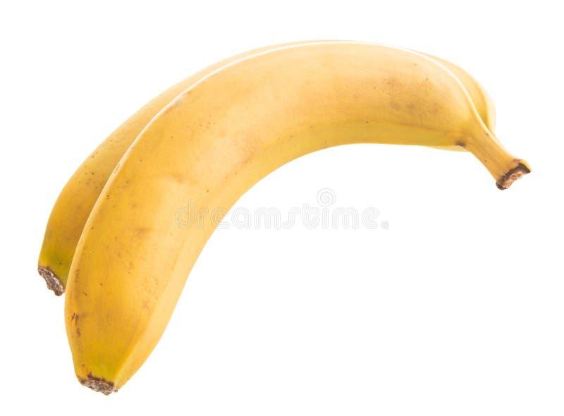 Dwa banana na wWhite tle obraz royalty free