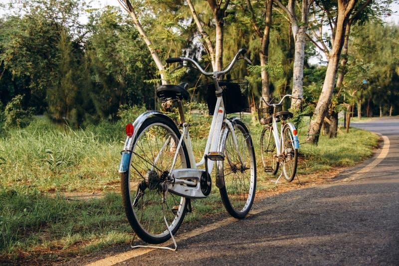 dwa białego bicyklu zdjęcie stock