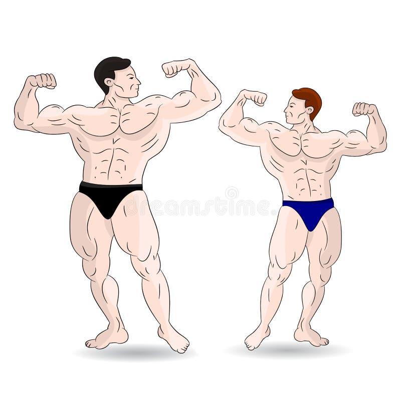 Dwa bodybuilder męski pokazywać bicepsy Na biały tle ilustracji
