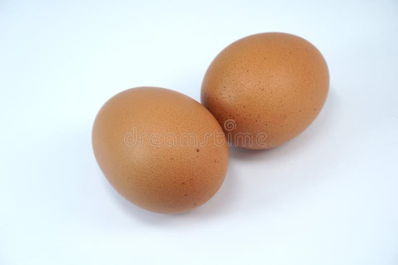 Dwa brown jajka na bia?ym tle zdjęcie stock