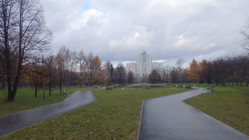 Dwa brukującej drogi w parku Jesień zdjęcie stock