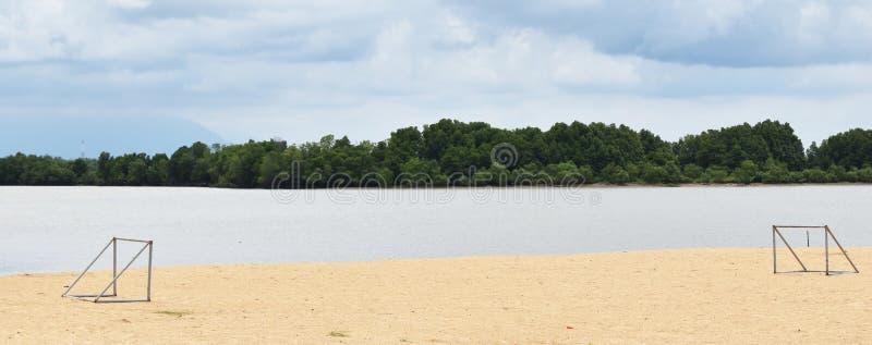 Dwa cel na plaży obok morza pod niebieskim niebem obrazy stock