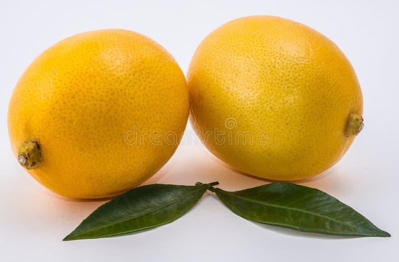 Dwa cytryna na białym tle zdjęcie stock