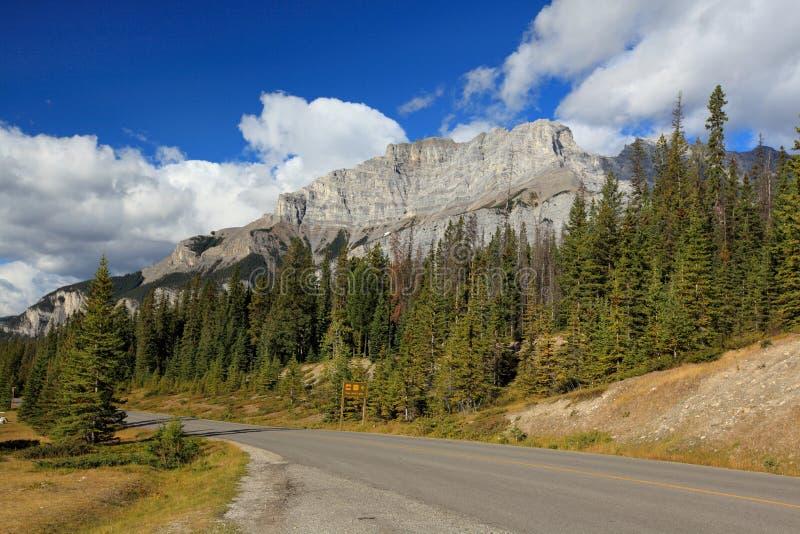Dwa dźwigarek jeziorny teren w Banff Alberta fotografia stock