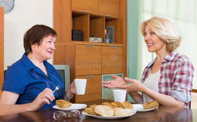 Dwa dojrzała kobieta pije herbaty fotografia stock