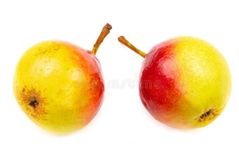 Dwa dojrzałej czerwonej żółtej bonkrety owoc odizolowywającej na białym tle Odgórny widok Mieszkanie nieatutowy wzór zdjęcia royalty free