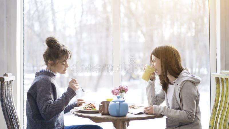 Dwa dorosłej kobiety przyjaciela je herbaty w kawiarni i pije fotografia royalty free