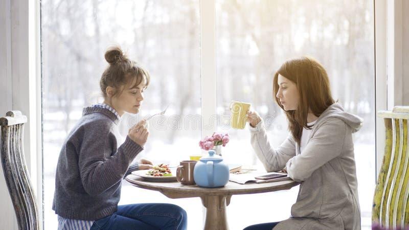 Dwa dorosłej kobiety przyjaciela je herbaty w kawiarni i pije zdjęcia royalty free