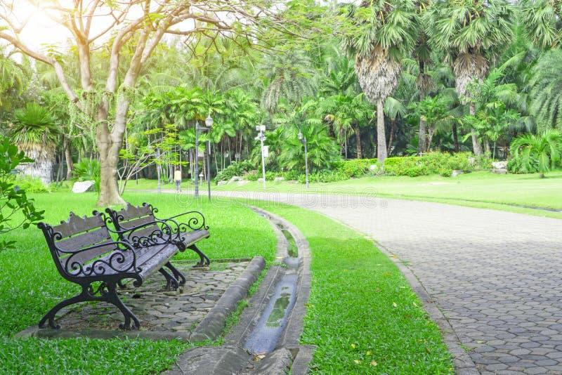 Dwa drewniana ławka na świeżym zielonym dywanowej trawy podwórko, gładki gazon obok szarego betonowego bloku bruku przejścia fotografia stock