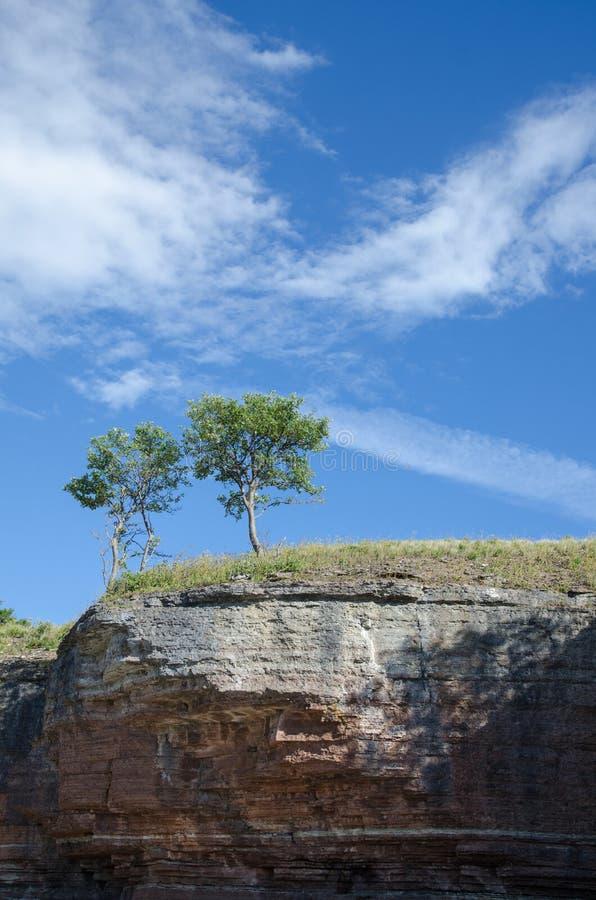 Dwa drzewa przy krawędzią falezy formacja obraz stock
