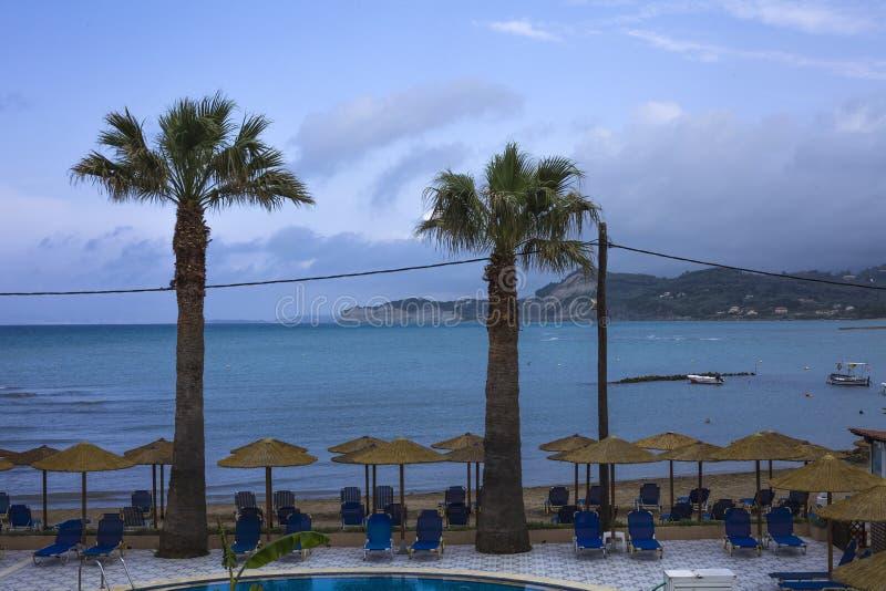 Dwa drzewka palmowego stoi przed pływackim basenem z wewnątrz miejscowością nadmorską Ten miejsce udziały krzesła układa pod para fotografia royalty free