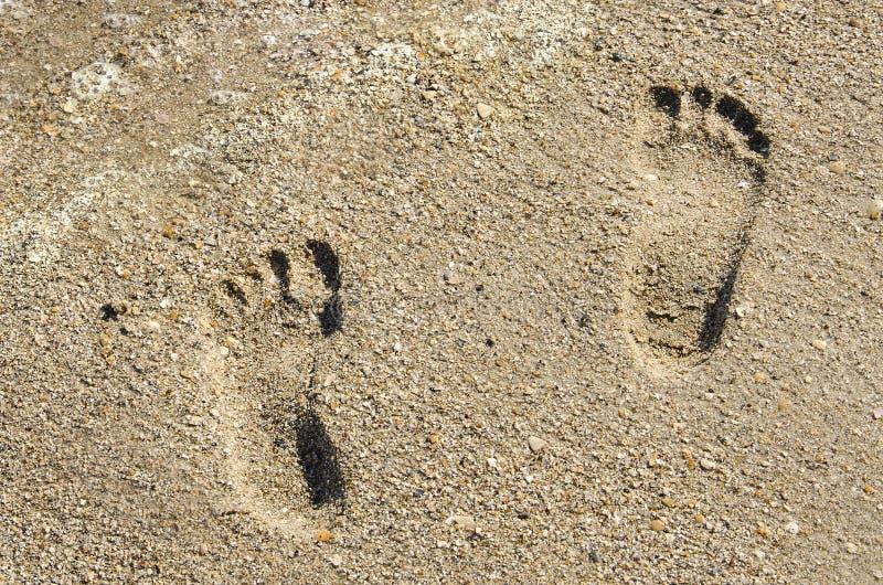 Dwa dziecka ` s odcisku stopy w piasku blisko morza pienią się w lecie fotografia royalty free