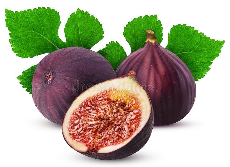 Dwa fig owoc jeden świeży cięcie w połówce z liściem zdjęcia stock