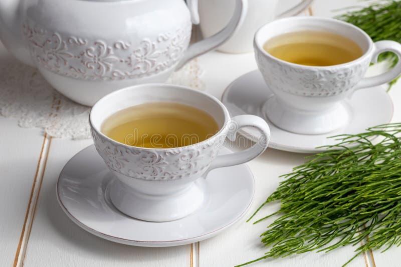 Dwa filiżanki horsetail herbata z świeżą Equisetum arvense rośliną obraz stock