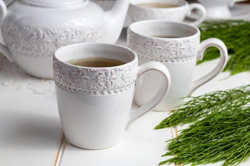 Dwa filiżanki horsetail herbata z świeżą Equisetum arvense rośliną zdjęcie royalty free