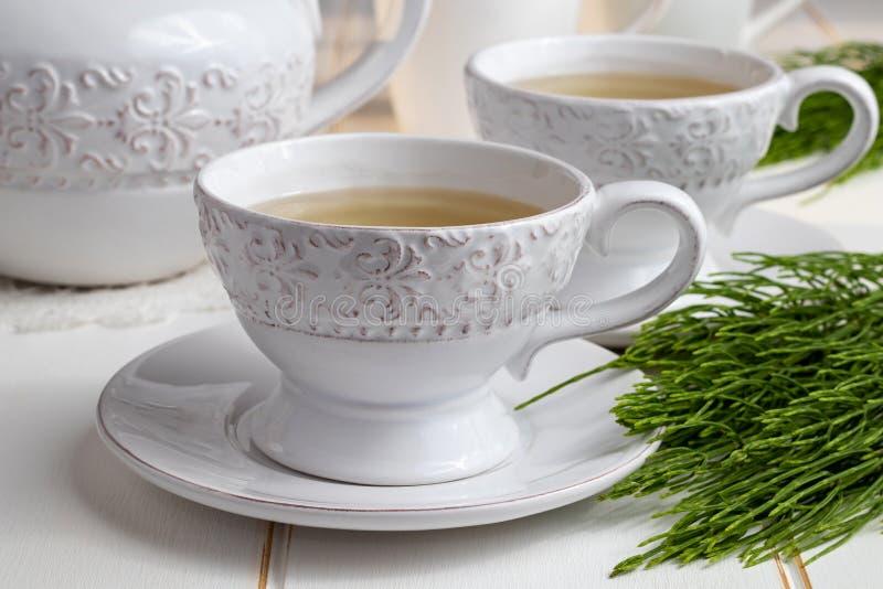 Dwa filiżanki horsetail herbata z świeżym Equisetum arvense kapują obrazy royalty free