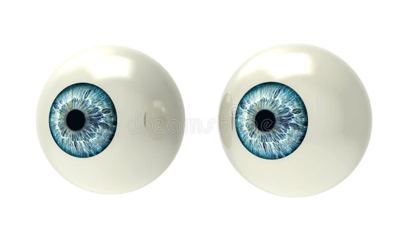 Dwa gałki ocznej na bielu zdjęcia stock