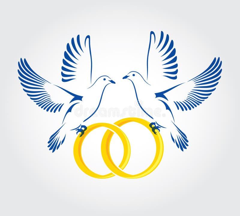 Dwa gołąbki lata z obrączkami ślubnymi fotografia royalty free