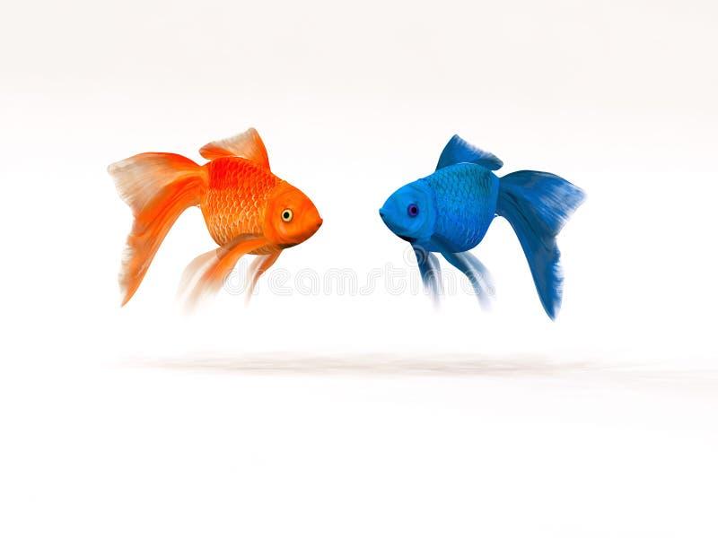 Dwa goldfish inaczej ilustracji