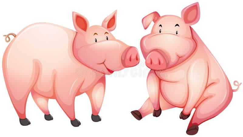 Dwa grubej świni z szczęśliwą twarzą ilustracja wektor
