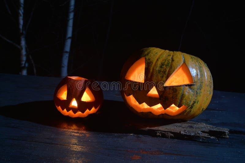 Dwa Halloween bani dźwigarka stawia czoło w ciemnym lesie zdjęcia royalty free