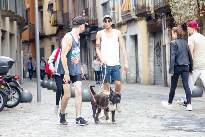 Dwa hiszpańskiego chłodno faceta w skrótach z psami, boksery na smyczach fotografia royalty free